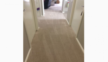 CARPET CLEANING VILLAWOOD 3rm $70 or 5rm $100