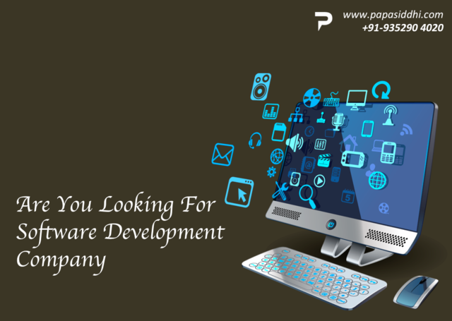Software Development company Udaipur Papasiddhi