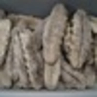 SEA CUCUMBER HIGH GRADE/DRIED SEA CUCUMBER