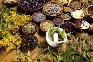 Best Naturopathy & Homeopathy Consultant in Sydney