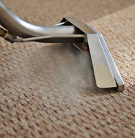 Save Your Carpet and Upholstery from Wearing out with Our Cleaning